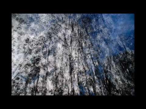 "Hugo Vasco Reis | ""Metamorphosis and Resonances for Accordion"" by Paulo Jorge Ferreira (2017)"